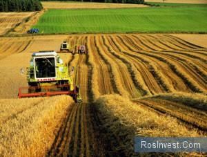 Урожай-2011: Россия соберет в 1,5 раза больше зерна