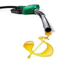Правительство оседлало цены на бензин в России