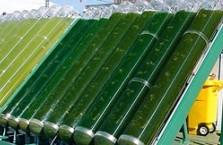 Зелёное топливо для авиации