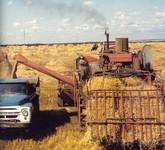 Сельское хозяйство России  - carbofood.ru
